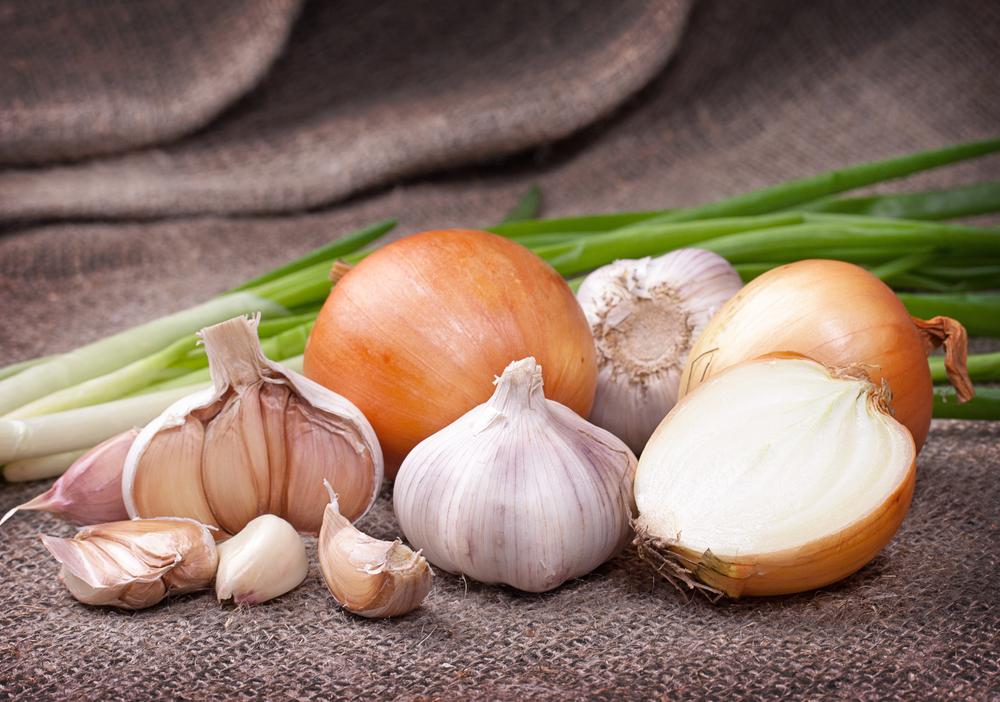 Nutrición y cáncer: ajo y cebolla