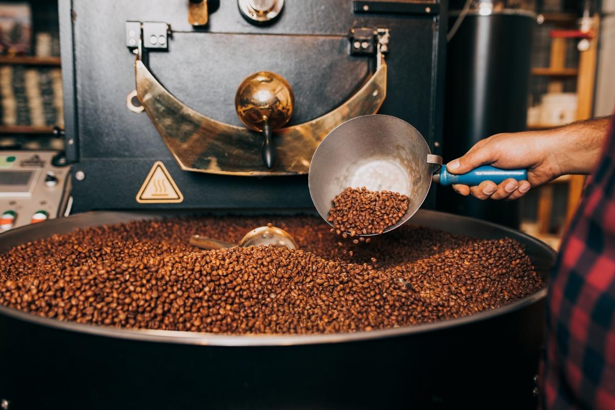 café: producción
