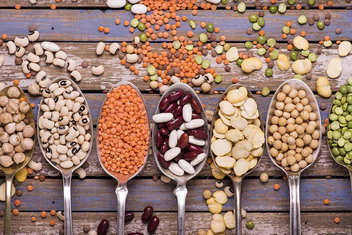 como desinflar el vientre: legumbres