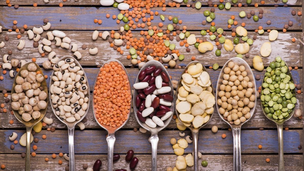 cicerchia: valores nutricionales