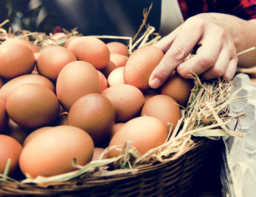 como almacenar huevos