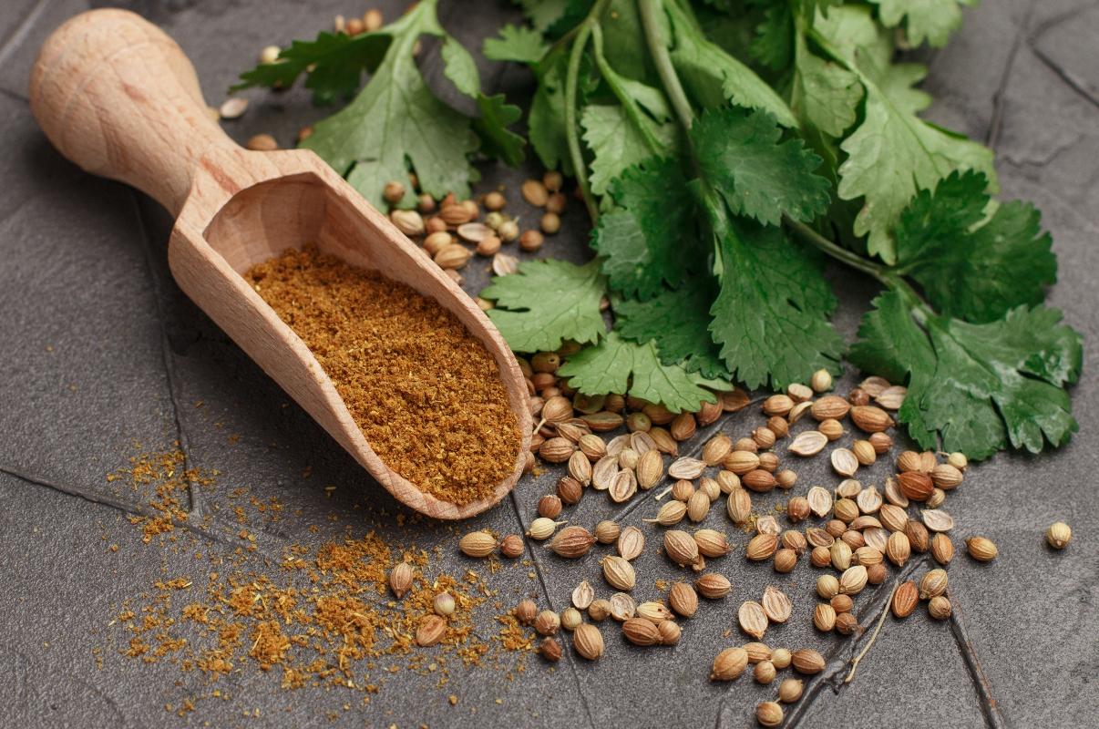recetas de cilantro