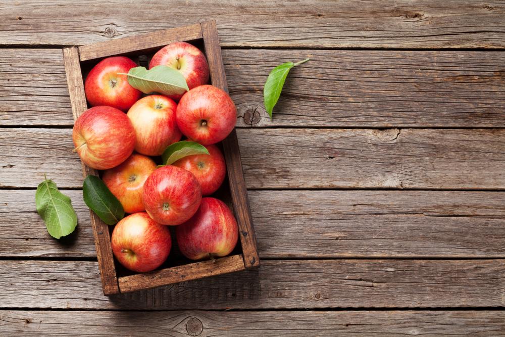 frutas y verduras de temporada: la guía