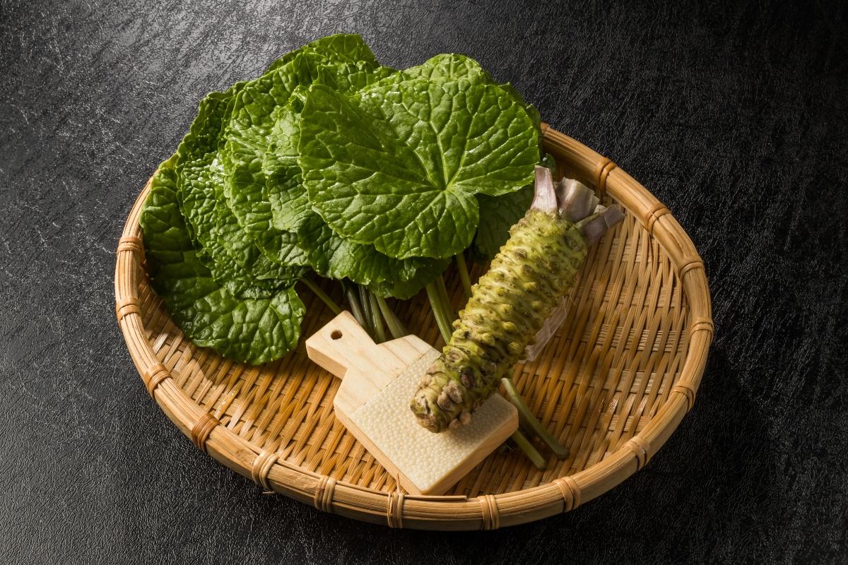 por qué el wasabi es tan picante