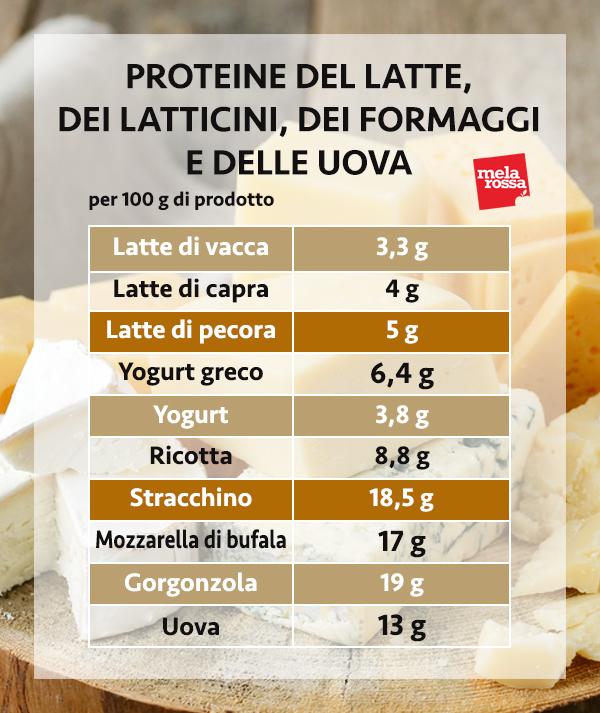 guía de proteínas: proteínas de leche, lácteos, queso y huevo