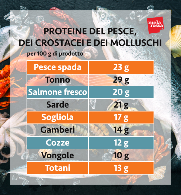 guía de proteínas: proteína de pescado