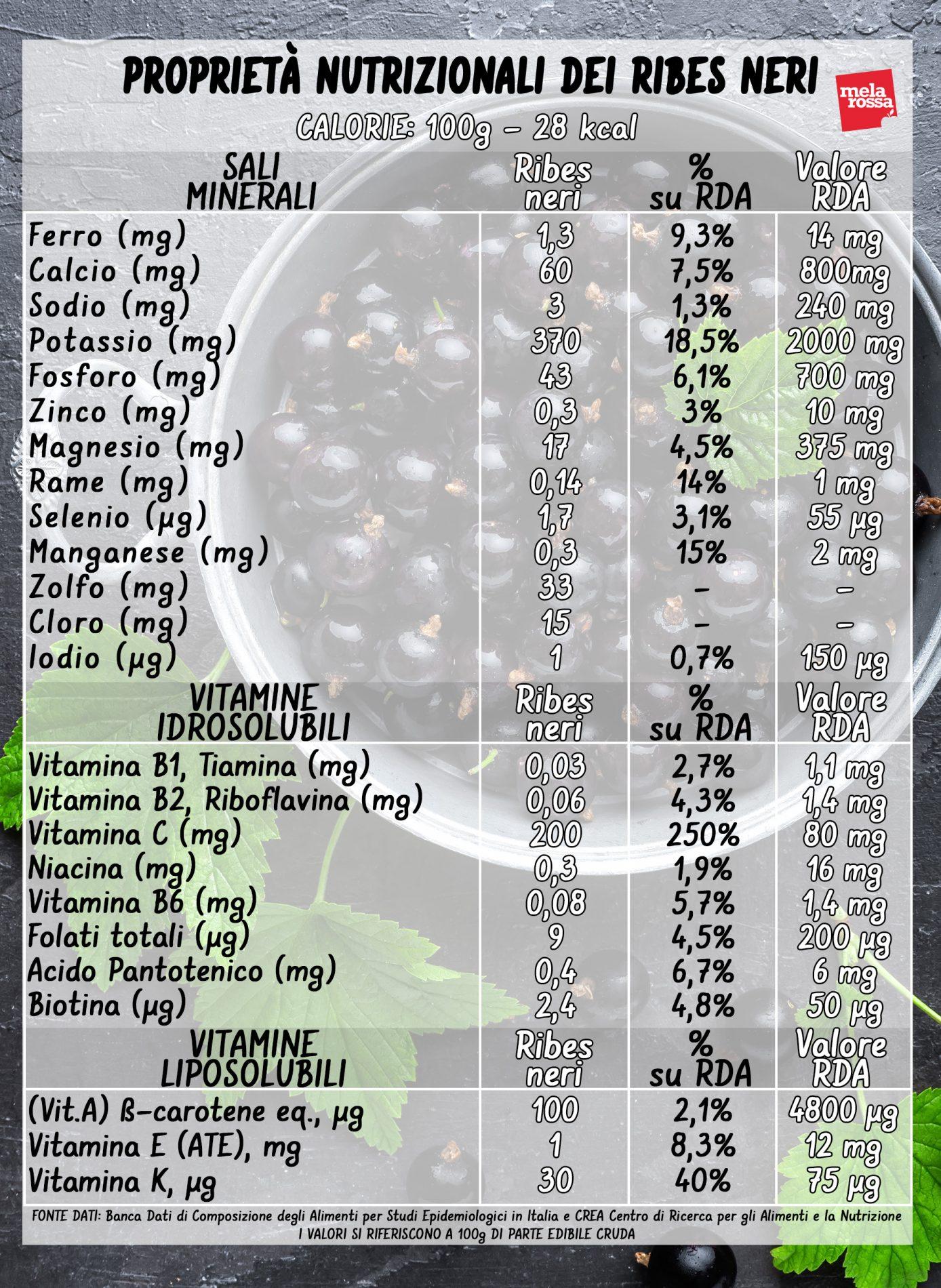 grosellas negras: valores nutricionales