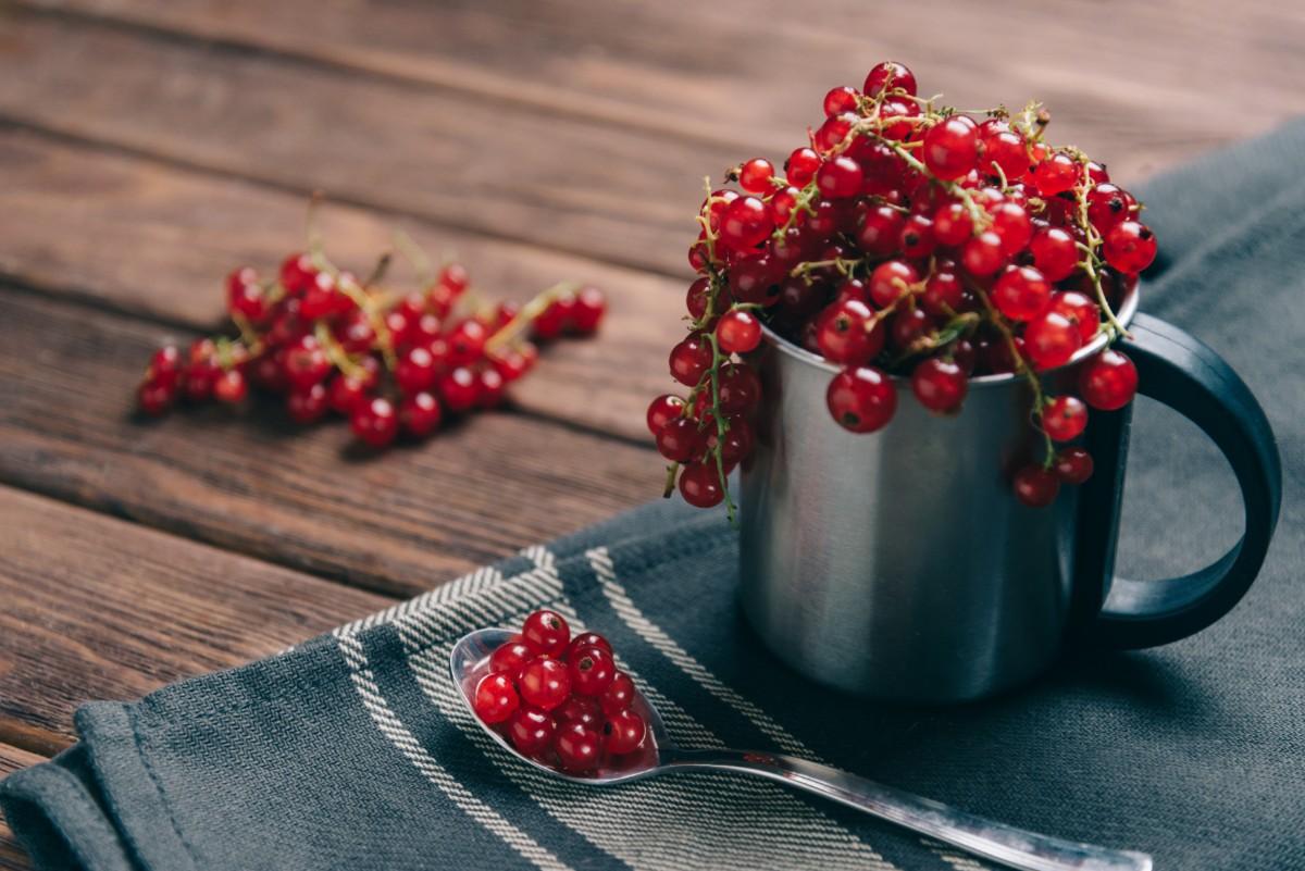 grosellas y grosellas: beneficios para la salud
