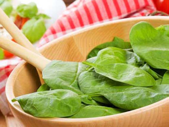 espinaca, calcio crecer vivo sano
