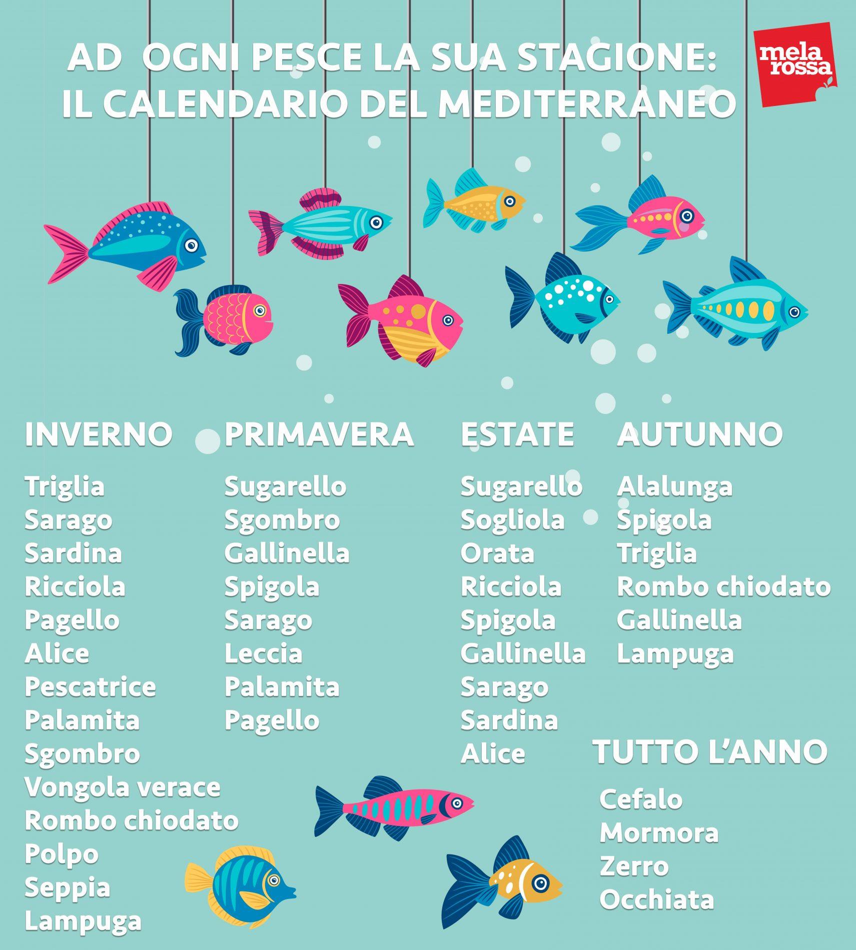 guía de compra de pescado: pescado para comprar