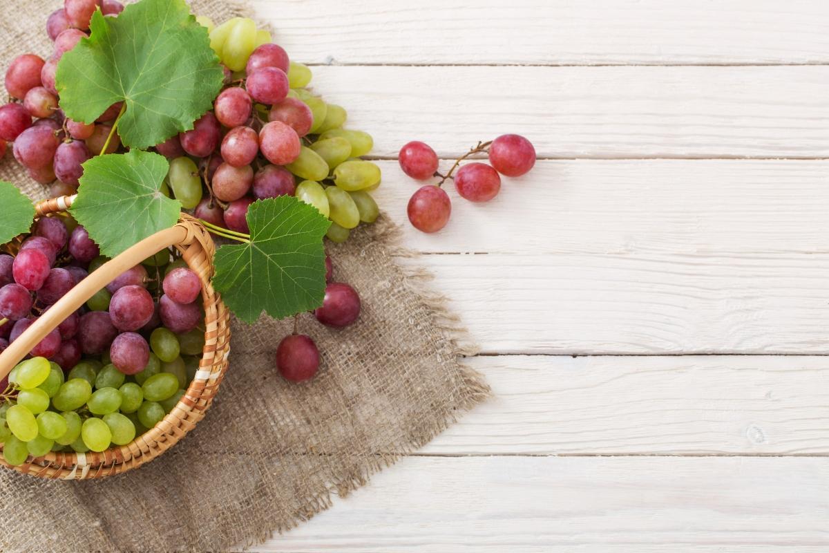 uvas blancas y negras: cuál es la diferencia